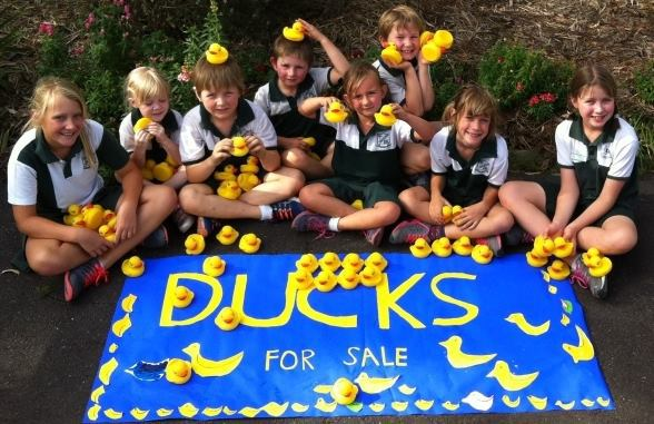 darlington duck race, country fun day,