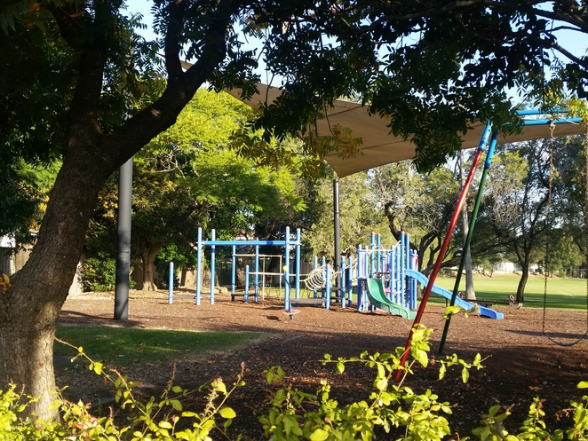 Lees Park, Canterbury, Inner West, Cooks River parks, parks, Cooks River, free, barbeque