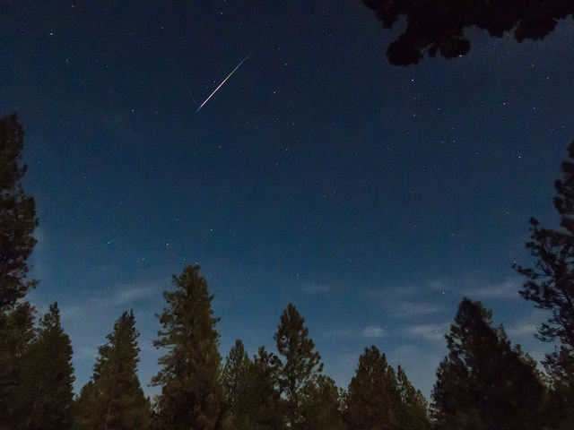 Photos of a Lyrids Meteor visible through the trees courtesy of Rocky Raybell @ Flickr