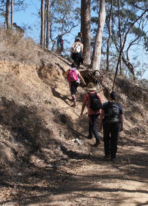 Getting off the fire trail to walk to the peak of Mermaid Mountain
