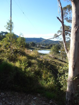 Murwillumbah is blessed with an abundance of natural beauty.