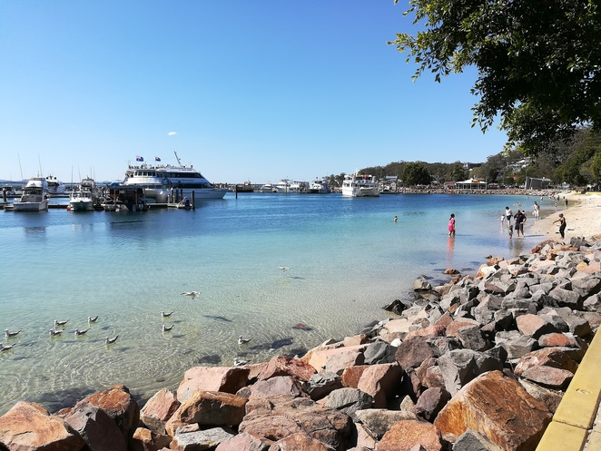 nelson bay, port stephens, NSW, family friendly, swimming, beaches, bays, kids, toddlers, children, families, safe, no waves, toilet facilities, shops, shade, nelson bay marina,