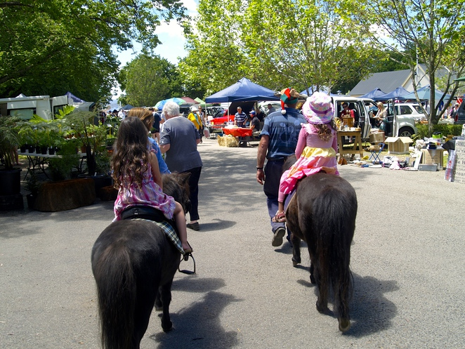 Pony ride at the local markets