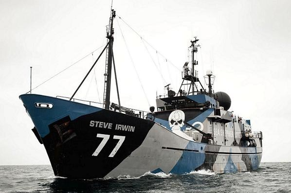 Sea Shepherd, Steve Irwin,