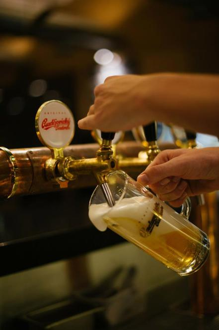 serve more than 150 beers, ales and wines