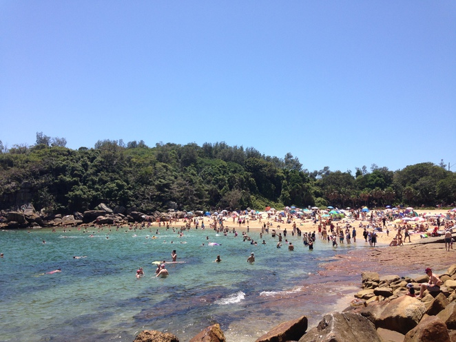 shelly beach cabbage tree bay aquatic reserve prince harry's top 10 free sydney sights