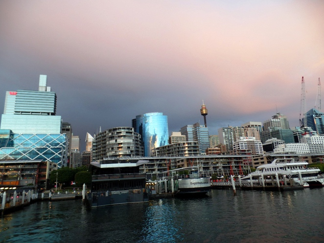 sydney skyline from darling harbour