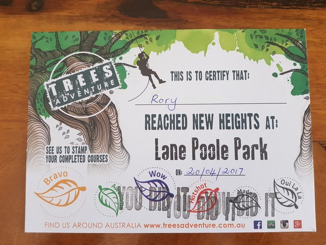 Trees Adventure, Lane Poole Park, Adrenalin sports Perth, aerial climbing Perth, Fun activities family Dwellingup, School holiday activities Pinjarra Perth, Rope climbing flying foxes Pinjarra Perth