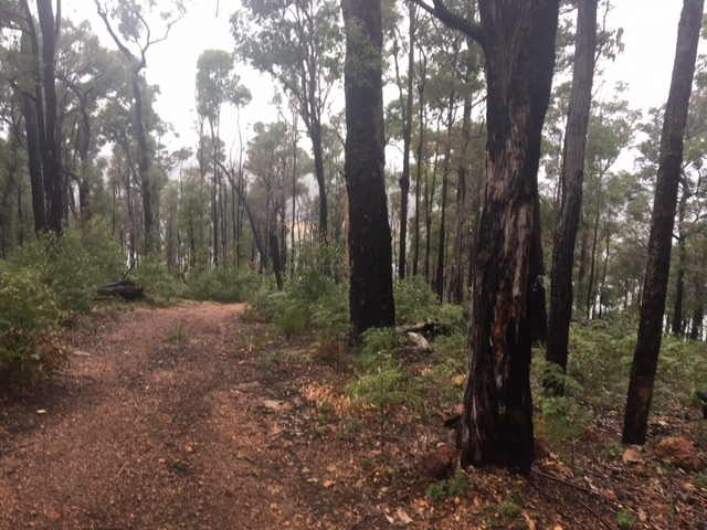 Waroona, Camping, Lake Navarino, Cabins, South West