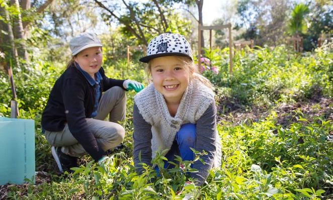 Brisbane, garden, event, environmental, children, free