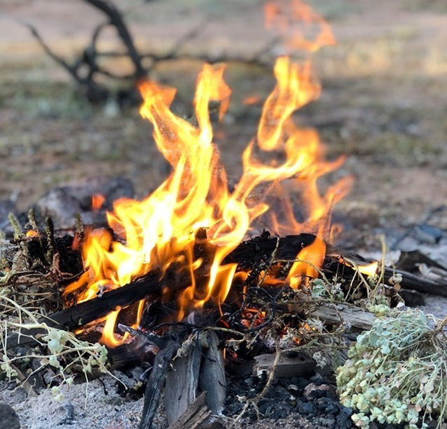 Campfire,cooking