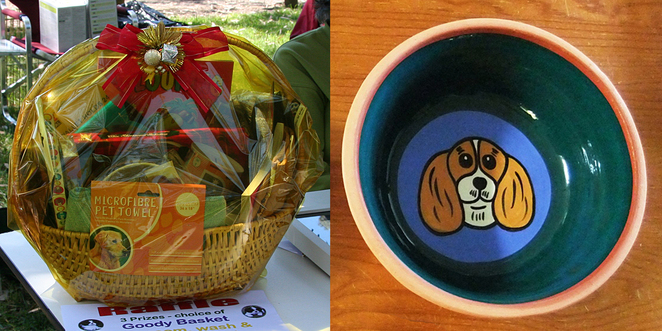 Cavalier King Charles Spaniel, Cavalier Capers, funday, basket of goodies, terracotta bowl,