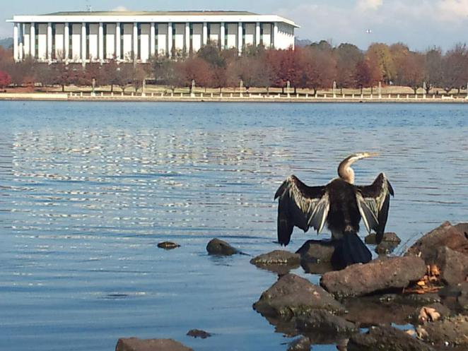 central basin lake burley griffin cycling loop canberra