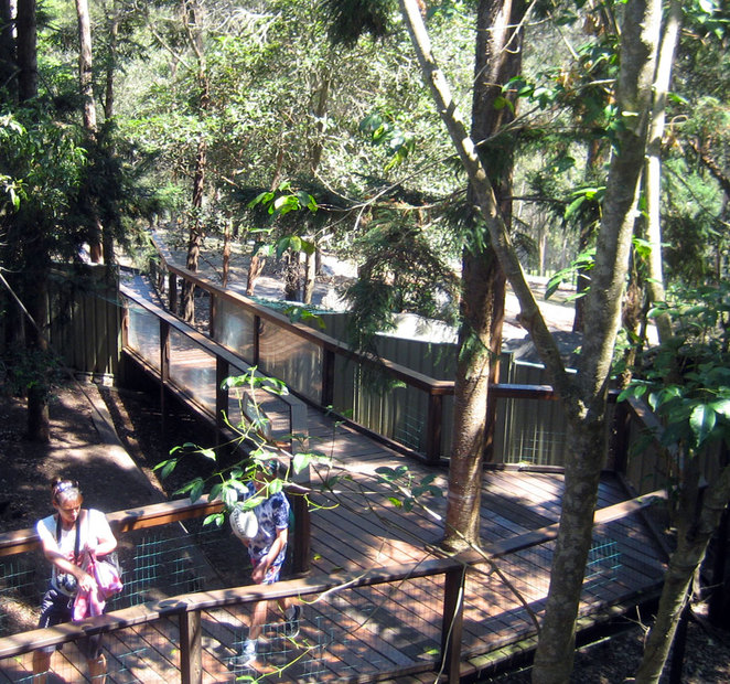 The view of the zoo from the Green Tree Frog Cafe