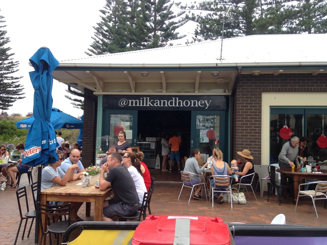 Kiama Blowhole Point Milk and Honey Cafe