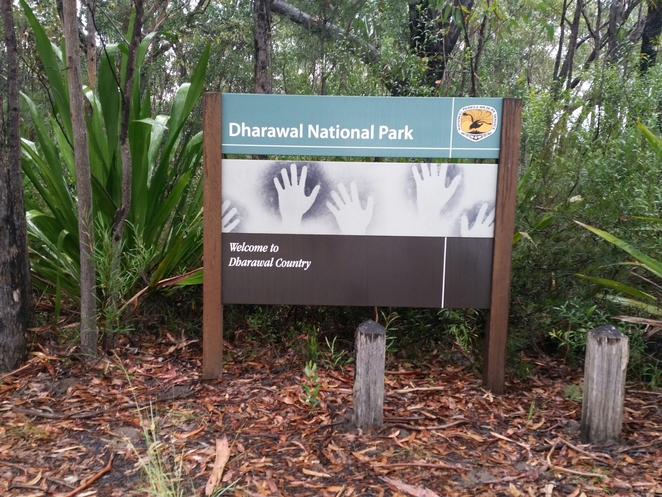 maddens falls, dharawal national park, walk, free, nature, waterfalls