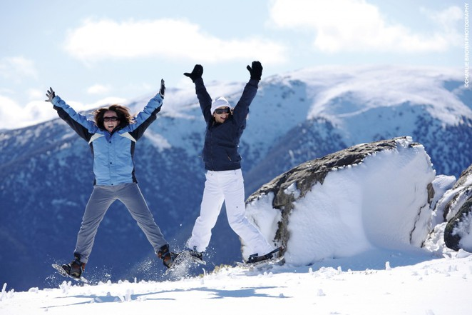 Mt Baw Baw snow tours