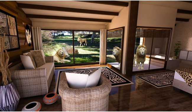 Hotel Rooms With Lions And Giraffes