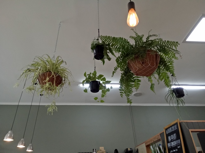 One For The Crow plant-based vegan cafe nursery maidstone