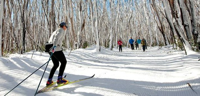 snowfields vic,snow fields victoria,where to go for snow in melbourne,victorian snowfields,victorian snow season,where to go to see snow in australia,where to go to see snow in victoria,skiing in Victoria,skiing holidays,snow holidays,lake mountain