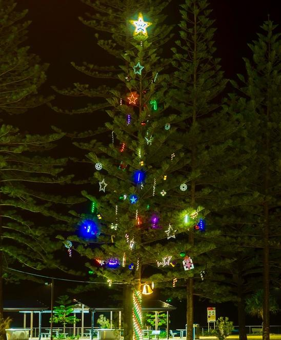 Sunshine Coast Council Community Christmas Trees, twenty locations, commitment to sustainability, LED lighting, Christmas Tree Trail, Alexandra Headland, Buderim, Caloundra, Conondale, Coolum, Cotton Tree, Eudlo, Glass House Mountains, Kenilworth, Maleny, Mapleton, Marcoola, Montville, Mooloolaba, Mudjimba, Nambour, Palmwoods, Woombye, Wurtulla, Yandina, FREE, picnics