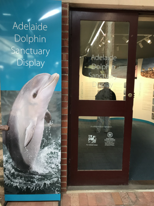 Adelaide Dolphin Sanctuary Display, Port Adelaide Visitor Information Centre