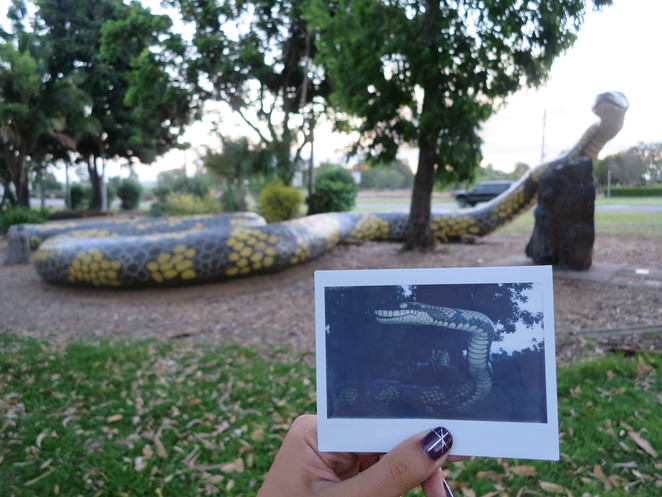 big things, australia, road trip, attraction, tourist, queensland, brisbane, cairns, plantation park, ayr, big snake, snake