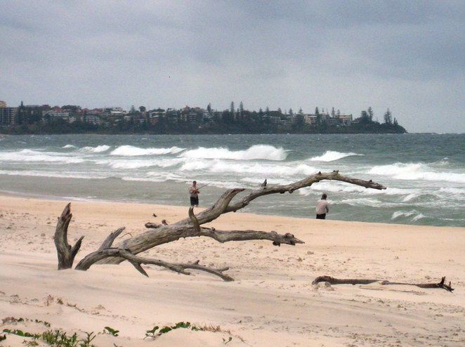 The Beach at the northern end of Bribie Island