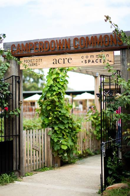 Family, Festival, Free, Christmas, Tourist Attractions, NSW, Homemade, Near Sydney, Camperdown, Workshops