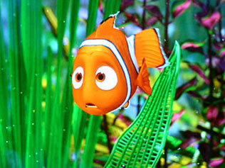 Finding Nemo, Nemo Needs Us, Save the Reef, Great Barrier Reef