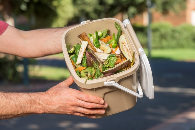 managing your food waste bin, city of whittlesea, community event, fun things to do, environmental, sustainability, getting rid of rubbsih ethically, council rubbish bins, minimise odours, free environmental webinar, learn something new, small footprint on the planet, save mother earth