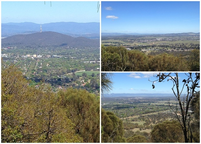 mount majura, walking trails, canberra nature park, centenary trail, bushwalking, hiking, seniors, exercise, bushwalks, canberra, ACT, hackett, watcson,
