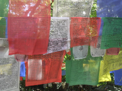 Prayer Flags, Norbulingka Institute, Dharamsala