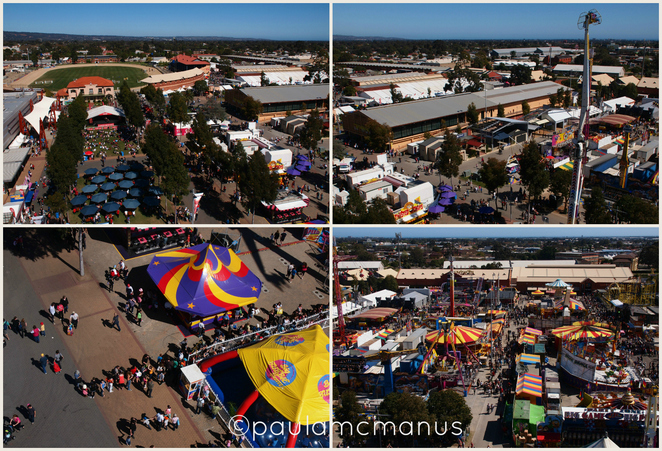 Wayville Showgrounds Royal Adelaide Show (�paula mcmanus)