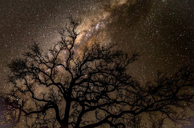 Space, Astronomy, Free, South Bank Parklands, Near Brisbane, Nightlife, Family Attractions