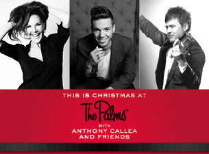 this is christmas at the palms