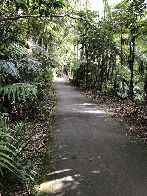 Well-maintained paths. Taken by Vivienne Pearson