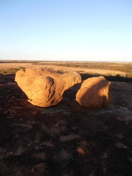 Berringbooding Rock is typical of many Wheatbelt rock formations.