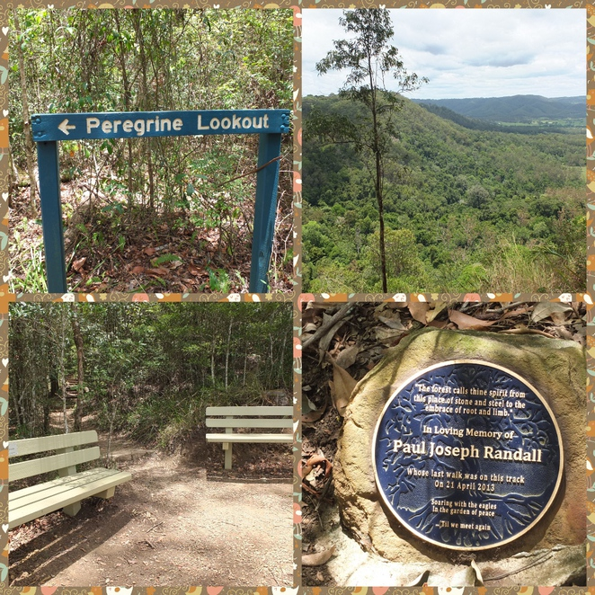 Wompoo Circuit, Mapleton Falls National Park, Blackall Range, Sunshine Coast hinterland, easy Class 2 walk, Kanyana Park and Lookout, Dulong Lookout, panoramic views, Obi Obi Valley, Peregrine Lookout