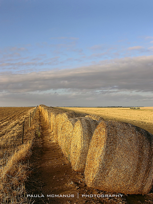 bales of hay leading lines