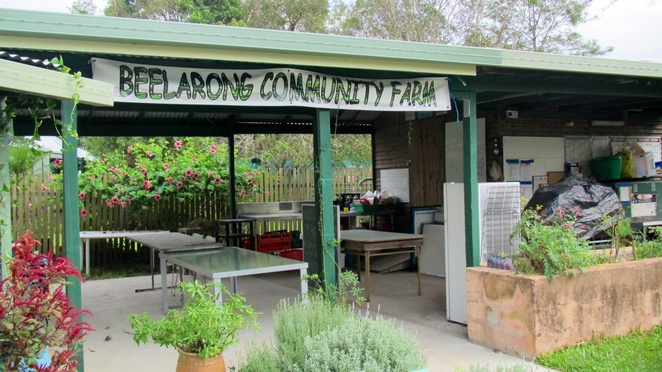 Beelarong community farm Morningside workshops GOLD fruit veg organic