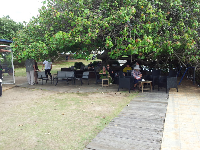 boat shed, the boatshed,cotton tree restaurant,waterfront dining