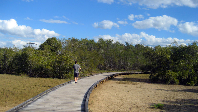 Currumbin Creek boardwalk is on the Palm Beach side of the creek