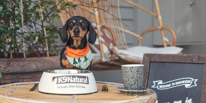 K9 Natural Dog Food Greenfields Bone Appetite Albert Park Melbourne dog-friendly