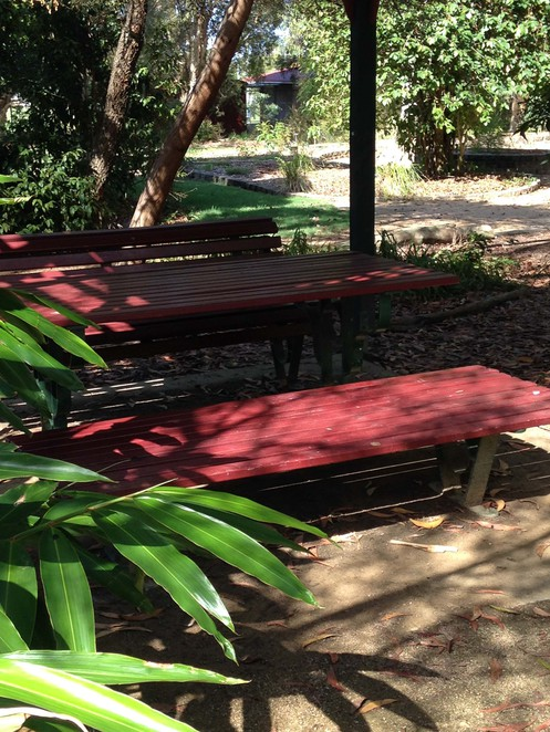 Redcliffe, Free, Parks, Gardens, Picnic Tables, Outdoors, Flying Foxes, Environment