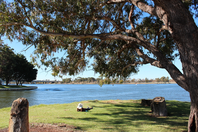 Relaxing Illakuri Sacred Dreaming Path Chilling Out Lazing In The Sun On A Sunday Afternoon In Perth Claisebrook Cove Beautiful Trees Rocks Friendship