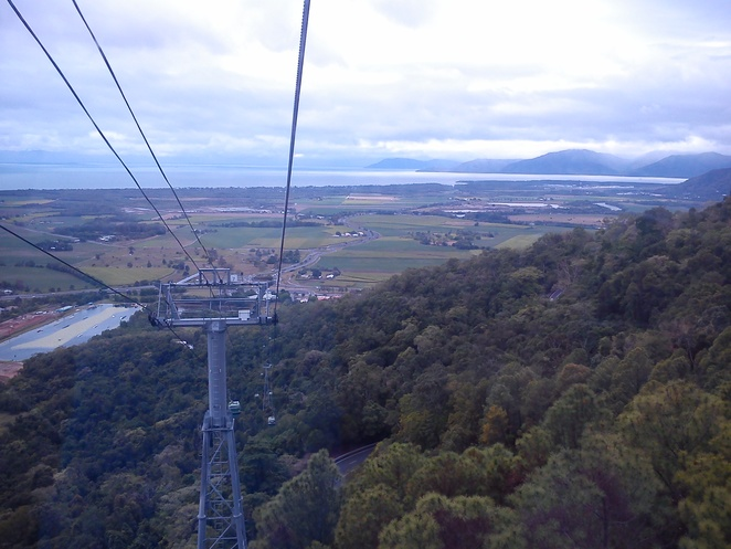 skyrail rainforest cableway, panaroma view of Cairns, rainforest gondolas, things to do in cairns, how to get to kuranda