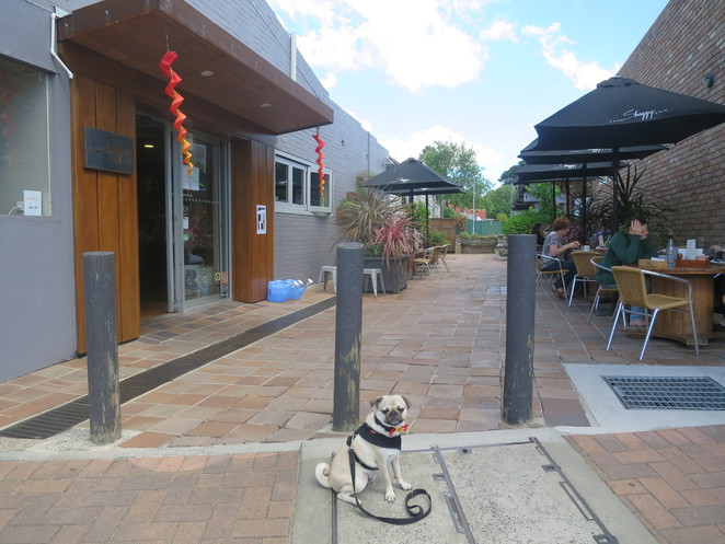 the shaggy cow, mittagong, new south wales, sydney, cafe, dog friendly, restaurant, bar, southern highlands, award winning, coffee, breakfast, brunch
