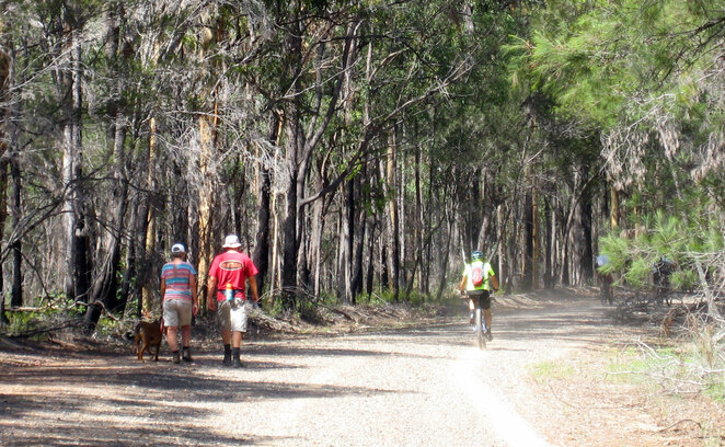There is plenty of space for social distancing at Daisy Hill Conservation Park