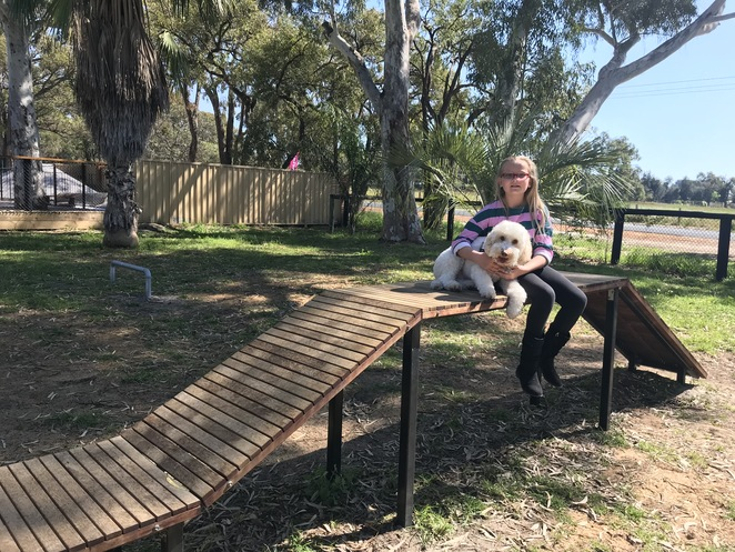 dog breakfast cafe, swan valley vet, places to take your dog in perth, dog friendly cafes, dog friendly cafes swan valley